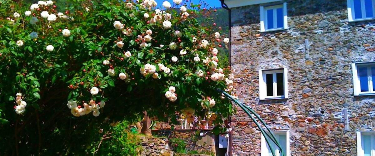 Vacation Rental Villa Ghianda