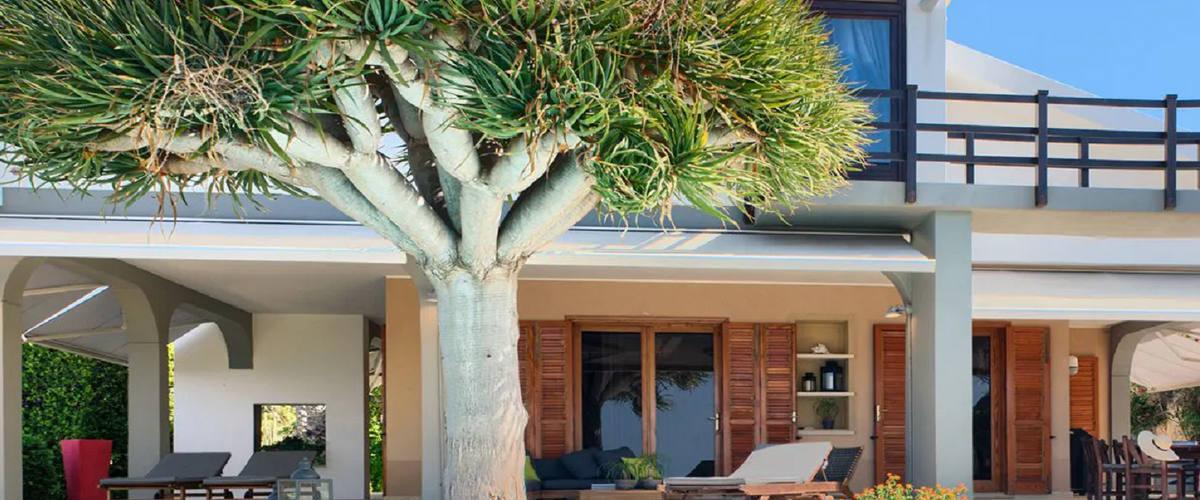 Vacation Rental Villa Flavia