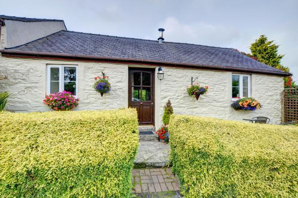 Vacation Rental Owl Cottage
