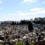 Rental Stunning Views, heart of Recoleta, Buenos Aires