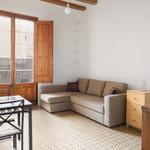 Rental Sunny flat,near ramblas,wifi incl.