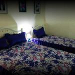 Rental  Apartment Bertolli