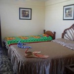 Rental Apartment  Igloo
