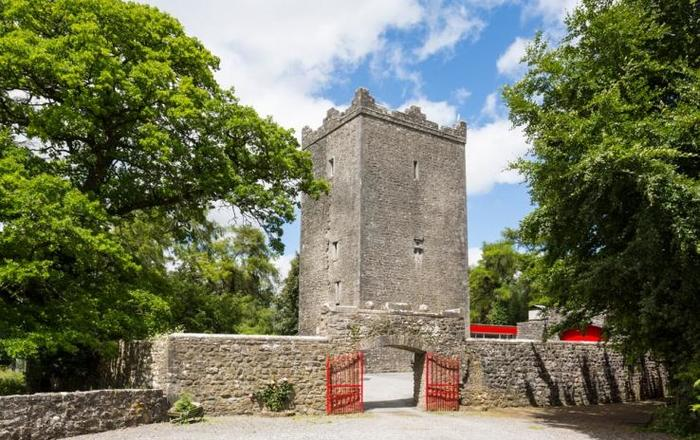 County Meath Castle, Mount Nugent