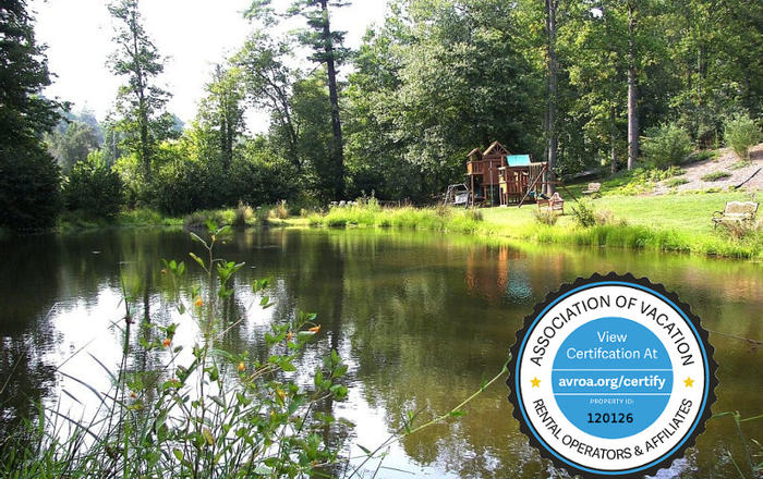 Private Pond/6BR/4BA/Hot Tub/Massage Chair/2FP/2 King Suites/WiFi/Kid Friendly!, Asheville