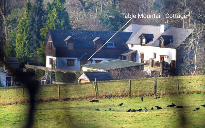 Table Mountain Cottage,