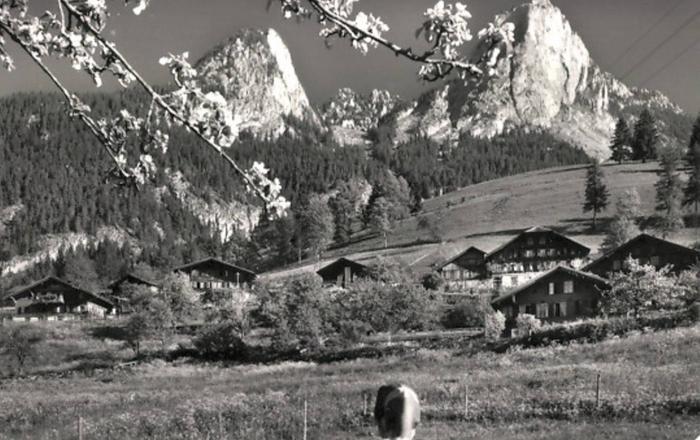 400 · 400 Year Swiss vYntage Chalet, Interlaken/Gstaad, Boltigen