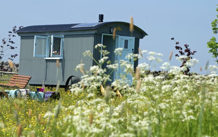 Doris Shepherds Hut,