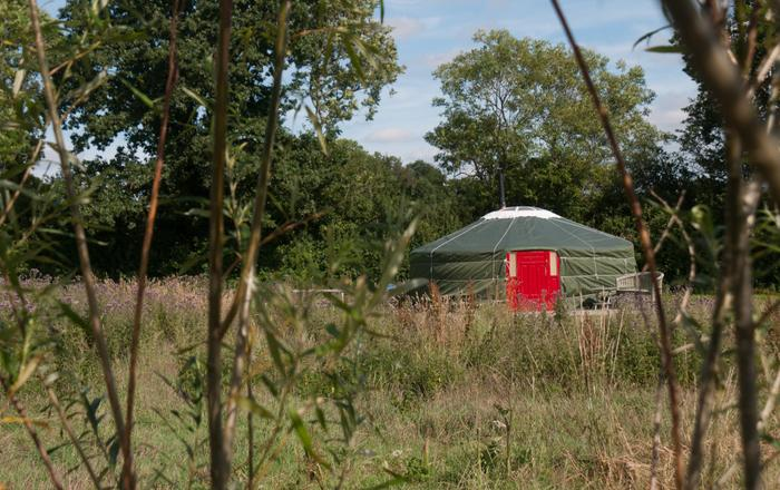 Cherry Yurt, Taunton