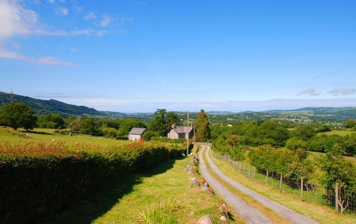 Llwyn Y Gwaew Farm, Conwy