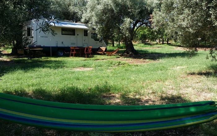 Motorhome under shade of olive groove. Sea 350 mt, Lido Di Noto
