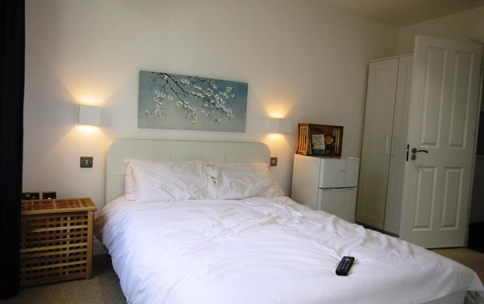 King Cross Private Double room (6), London