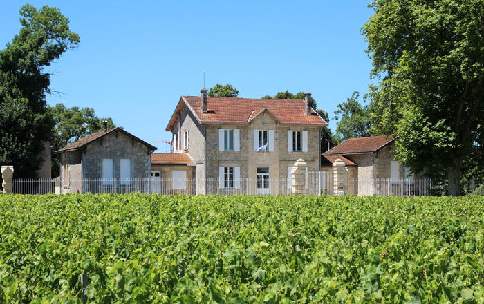 Petit Chateau Medoc, Pauillac