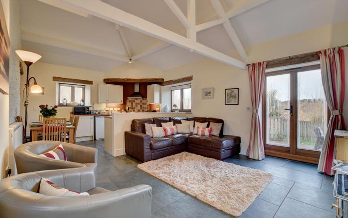 House Martins, Muddiford