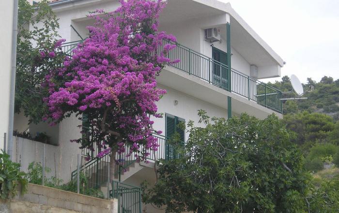 Apartment Neva A2 Primosten, Riviera Sibenik, Primošten Burnji