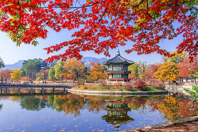 Gyeongbokgung Palace grounds in Seoul during Autumn