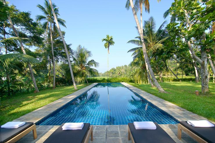Pool overlooking the paddy fields