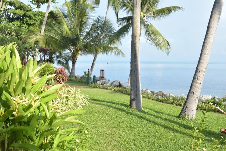 Coconut Paradise Gardens